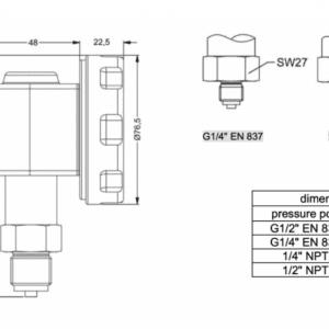 Chân ren đồng hồ đo áp suất có hiển thị điện tử